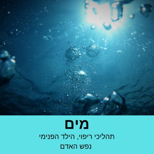 מים מתוקן
